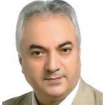 Seyed Jamal Seifi